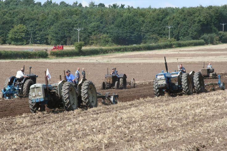 Mass Cultivation 3