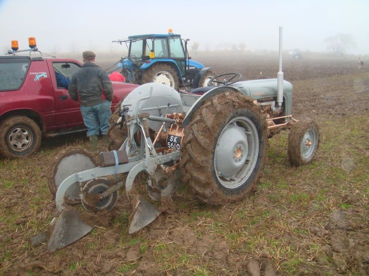 Feruson Grey Gold Foulis Ploughing Match