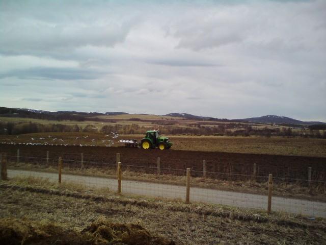6430 ploughing Carrbridge
